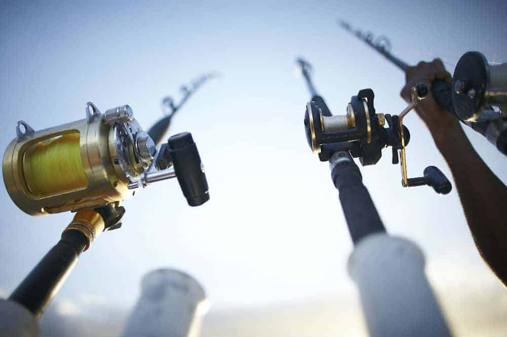 Piscifun Torrent Baitcasting Reel Review