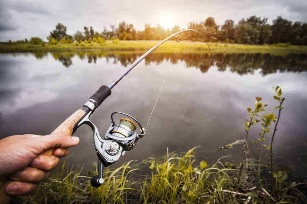 Sougayilang XY4000 Spinning Fishing Reel Review