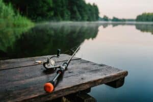 Best Rod And Reel Combos