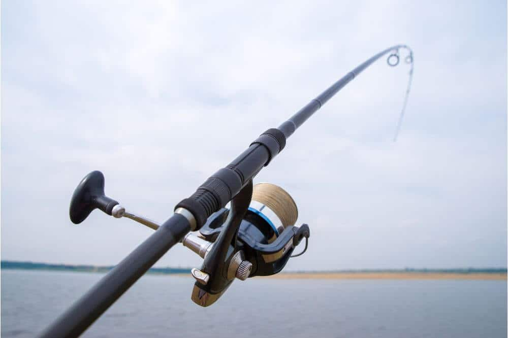 Piscifun Torrent One Piece Baitcasting Rod Review